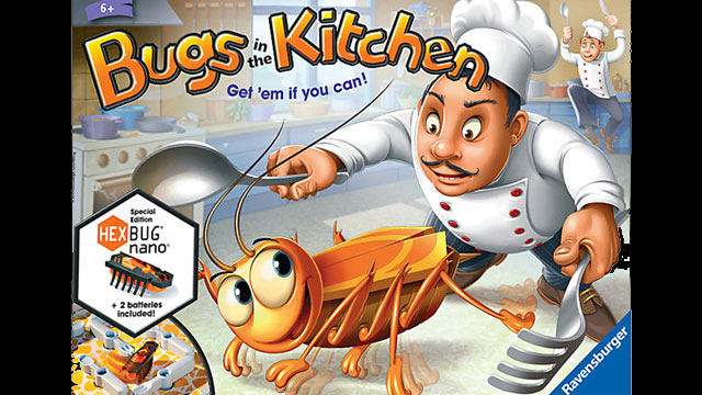 bugs-in-kitchen-voice