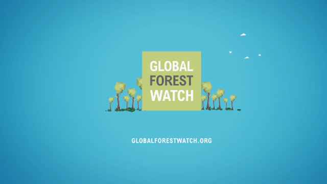 Global Forest Watch Voiceover
